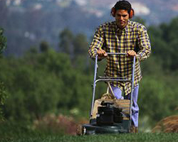 Lawnmower Servicing Southend Chelmsford